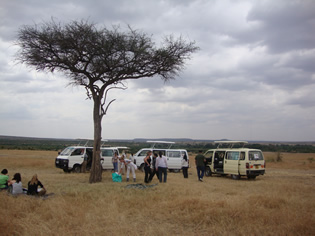 Picnic Lunch in Mara